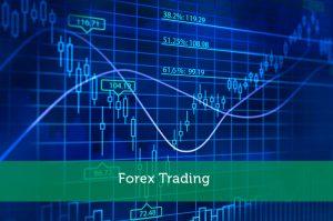 forex trading terminologia