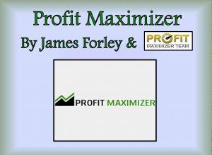 profit maximizer come funziona