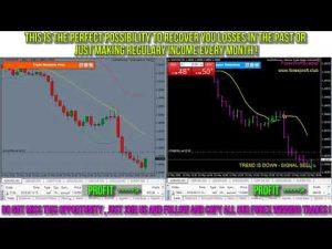 forexpros copy trading